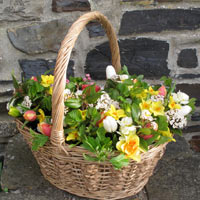 Basket of posies for Mothering Sunday
